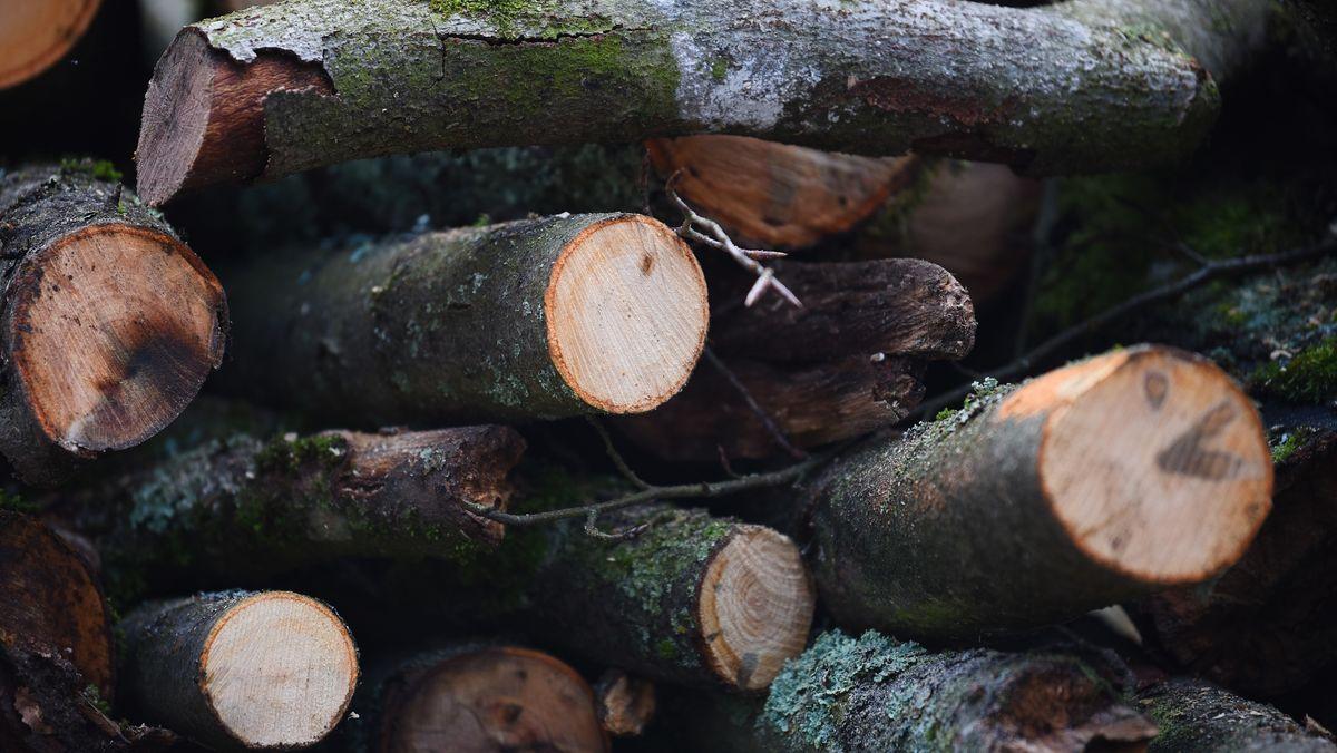 Gemeinschaftswälder als Immaterielles Kulturerbe aufgenommen