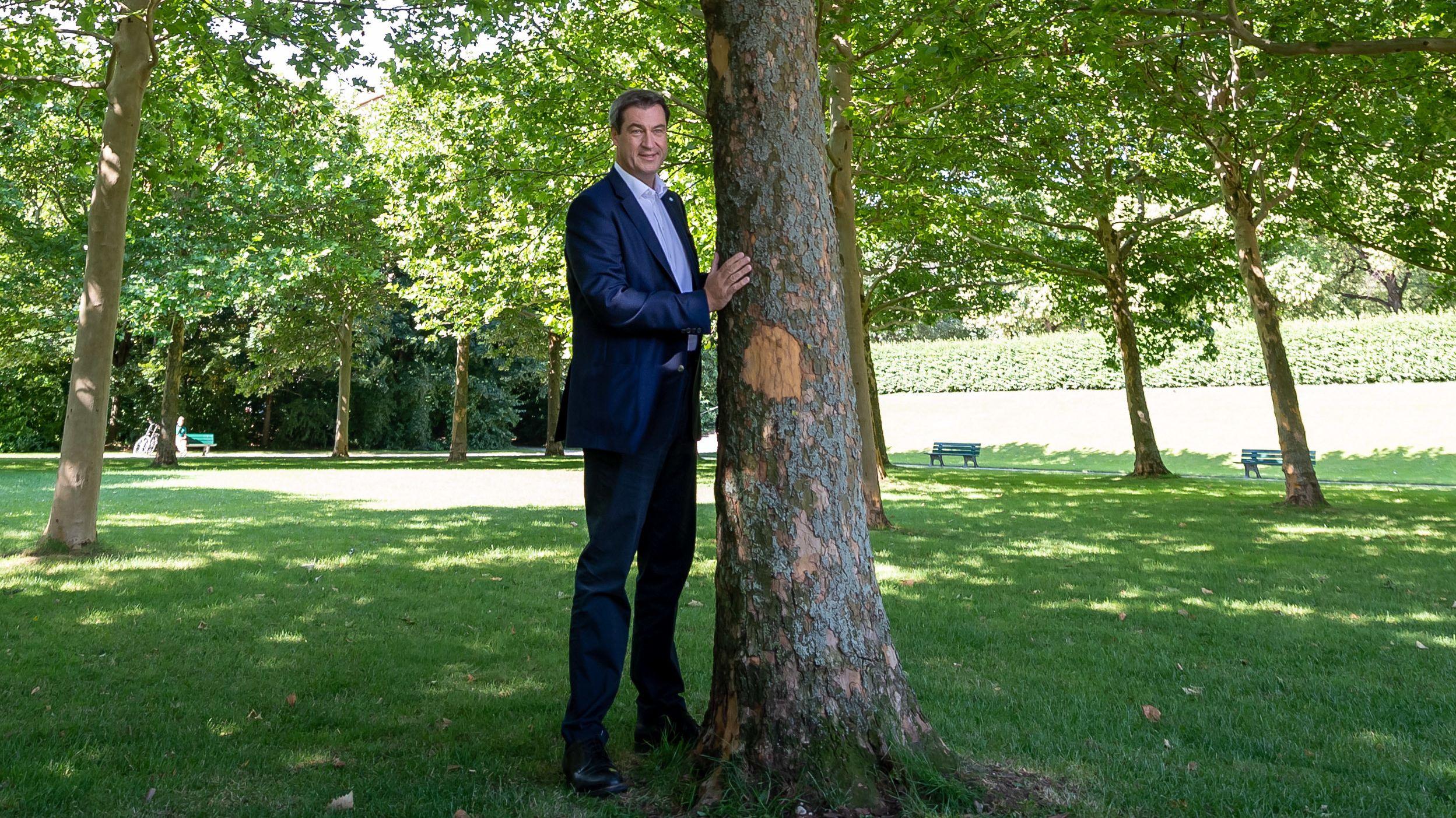 Ministerpräsident Markus Söder steht neben einem Baum im Hofgarten hinter der bayerischen Staatskanzlei