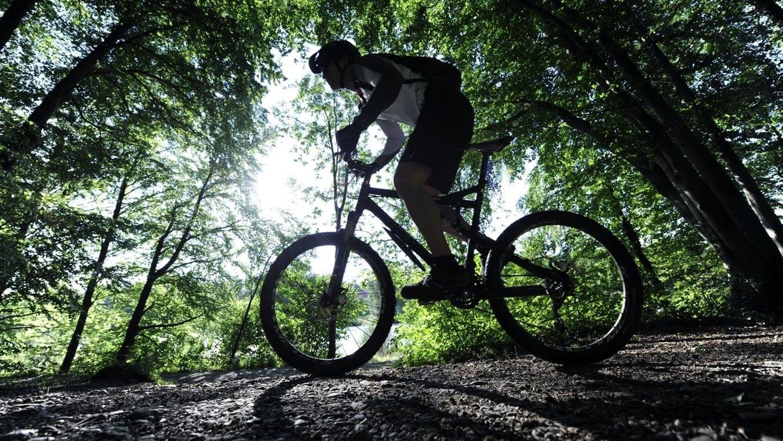 Ein Mountainbiker ist mit einem E-Bike im Wald unterwegs.