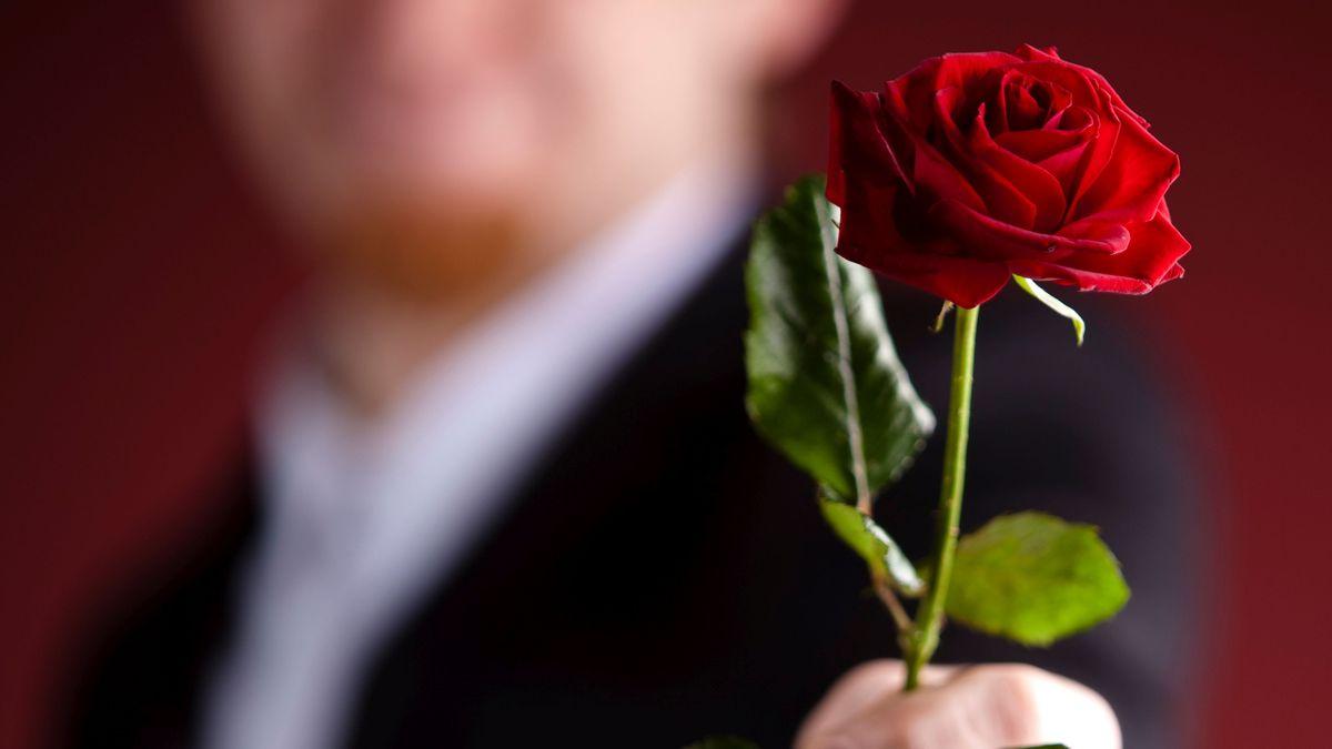 Mann streckt eine rote Rose entgegen