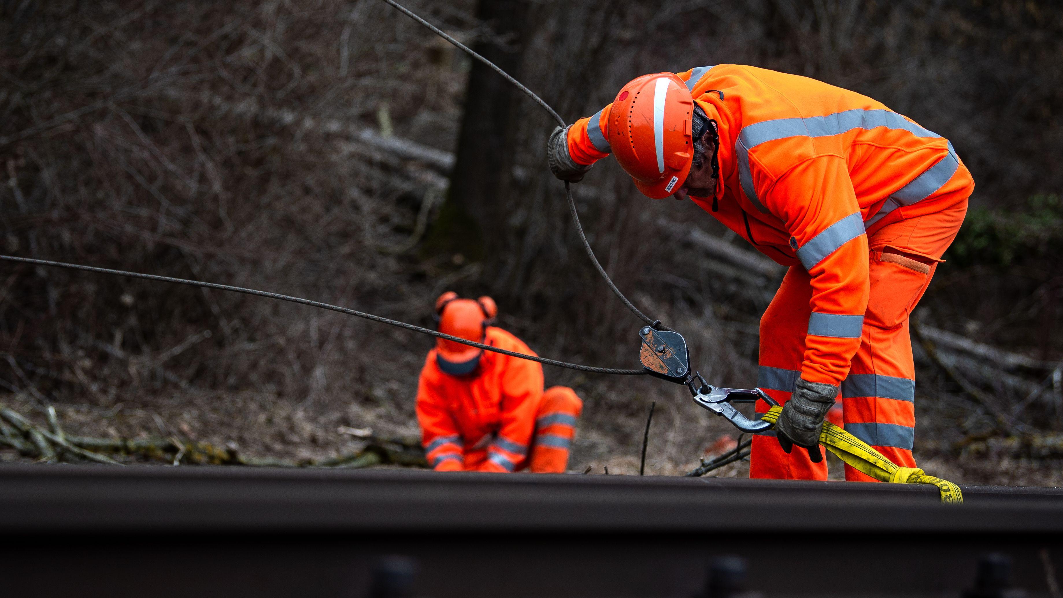 Arbeiter entfernen Äste an einer Bahnstrecke (Symbolbild)