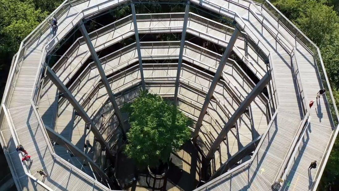 Der kreisrunde Baumwipfelpfad im Steigerwald, aus der Vogelperspektive betrachtet, ist mehr als 40 Meter hoch. Holzstege führen im Kreisrund in die Höhe.