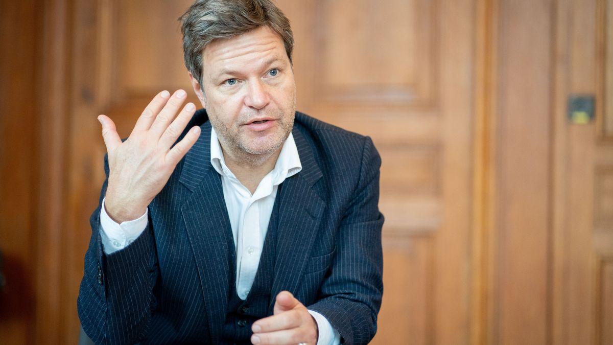 Robert Habeck, Bundesvorsitzender von Bündnis 90/Die Grünen, spricht in einem Interview