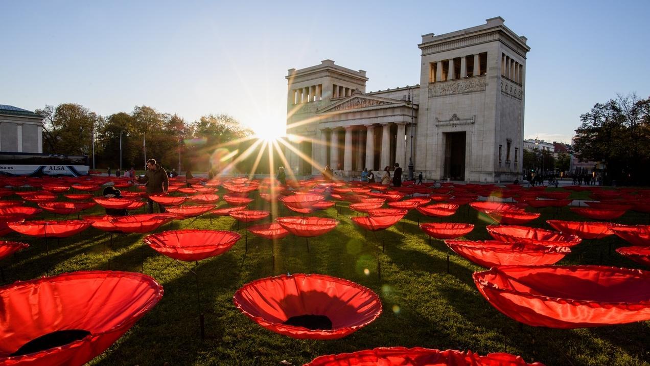 Kunstinstallation von Walter Kuhn: Mohnblumenfeld auf dem Königsplatz in München