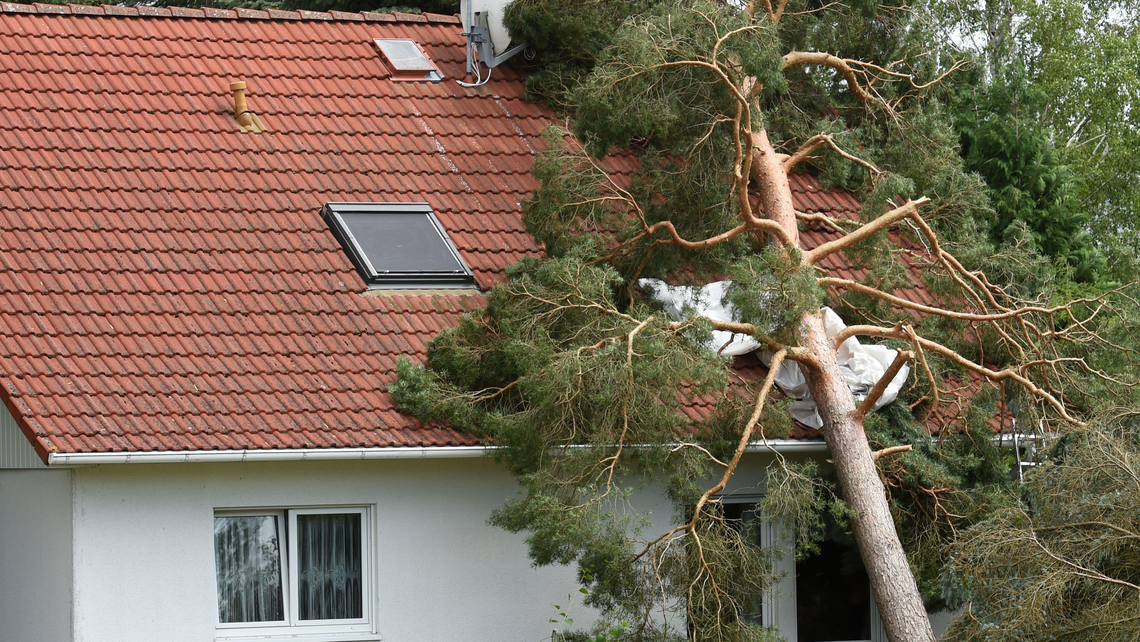 Ein Baum ist auf ein Haus gefallen