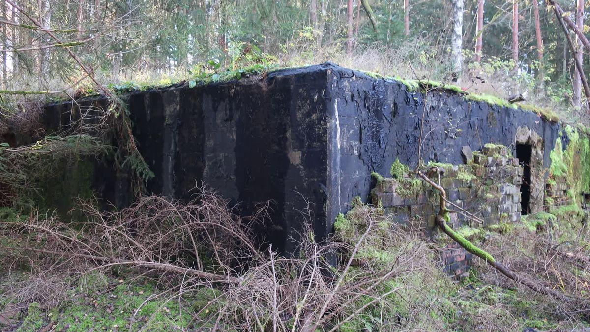 Alter Bunker auf Muna-Areal