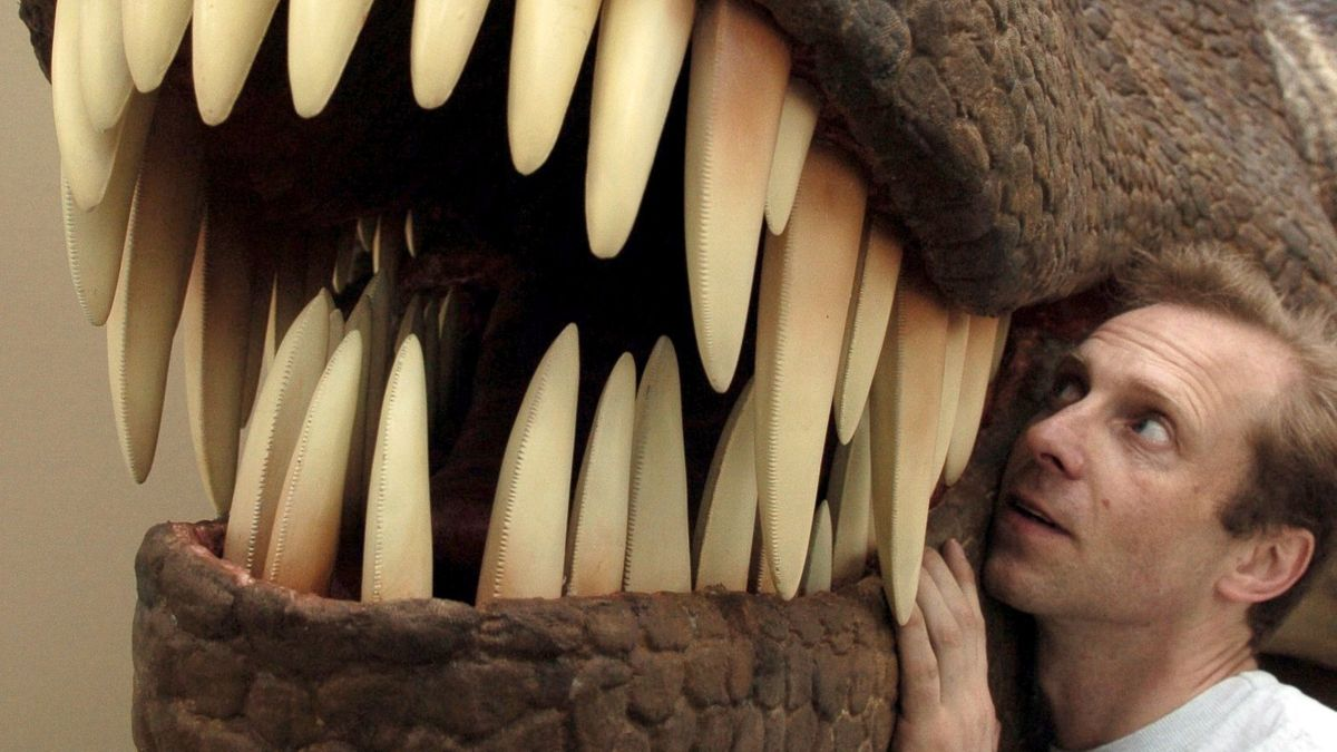 T.rex - ein Maul voller Zähne