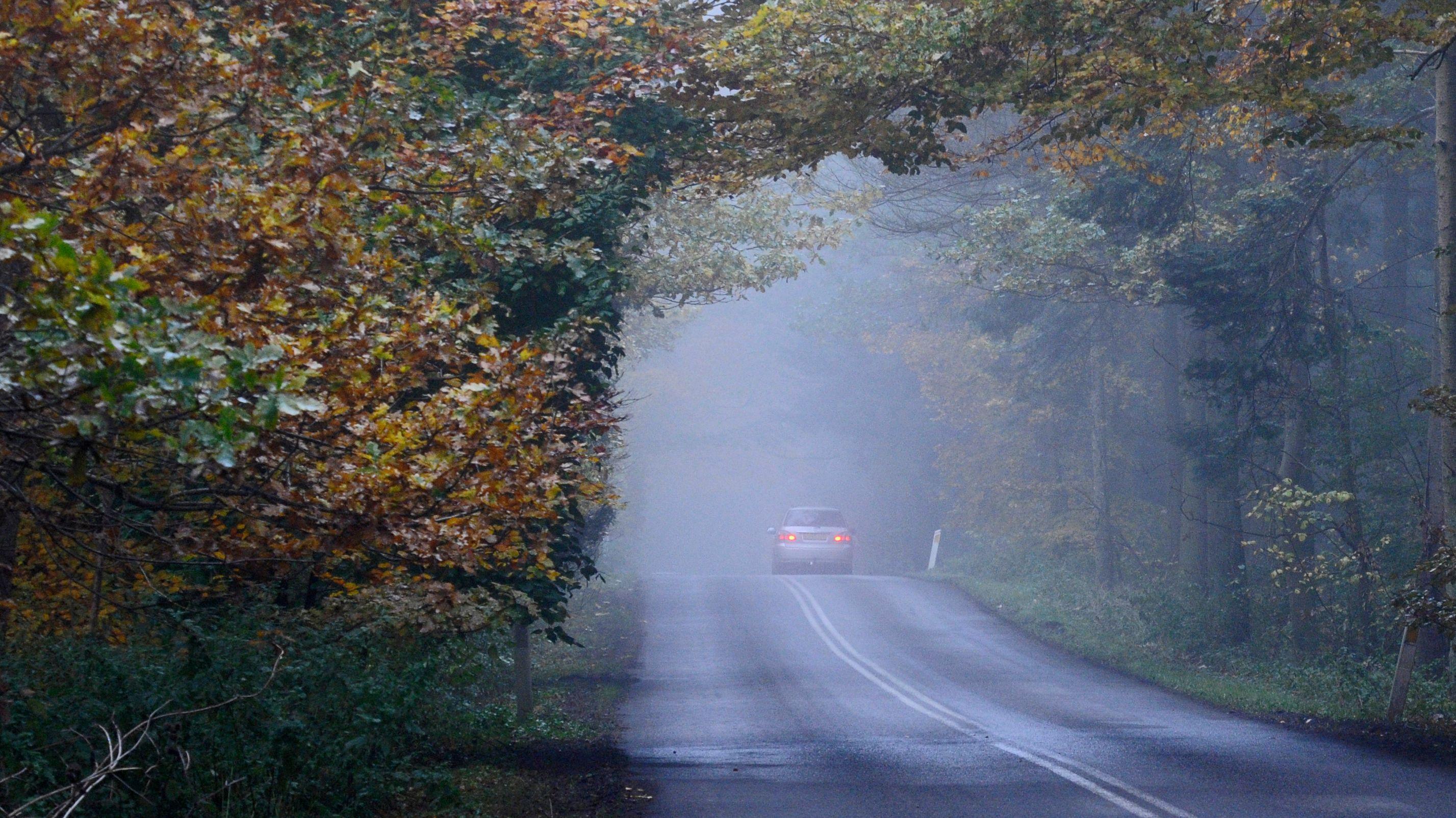 Auto fährt auf nebliger Straße
