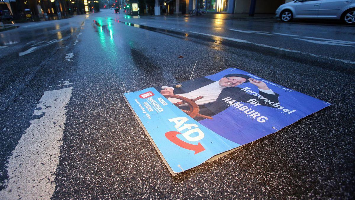 Ein Wahlplakat der AfD liegt auf einer Hamburger Straße