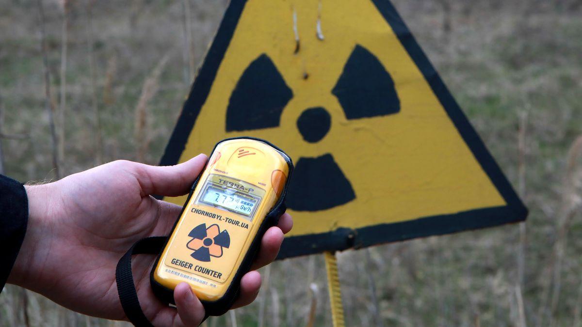 Tschernobyl: Eine Person hält einen Geigerzähler nähe des Roten Waldes in der Nordukraine.