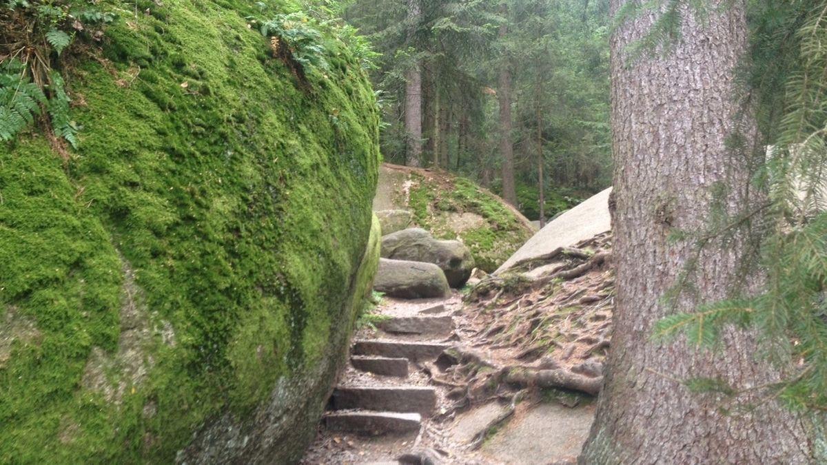 Blick auf das Felsenlabyrinth in Wunsiedel.