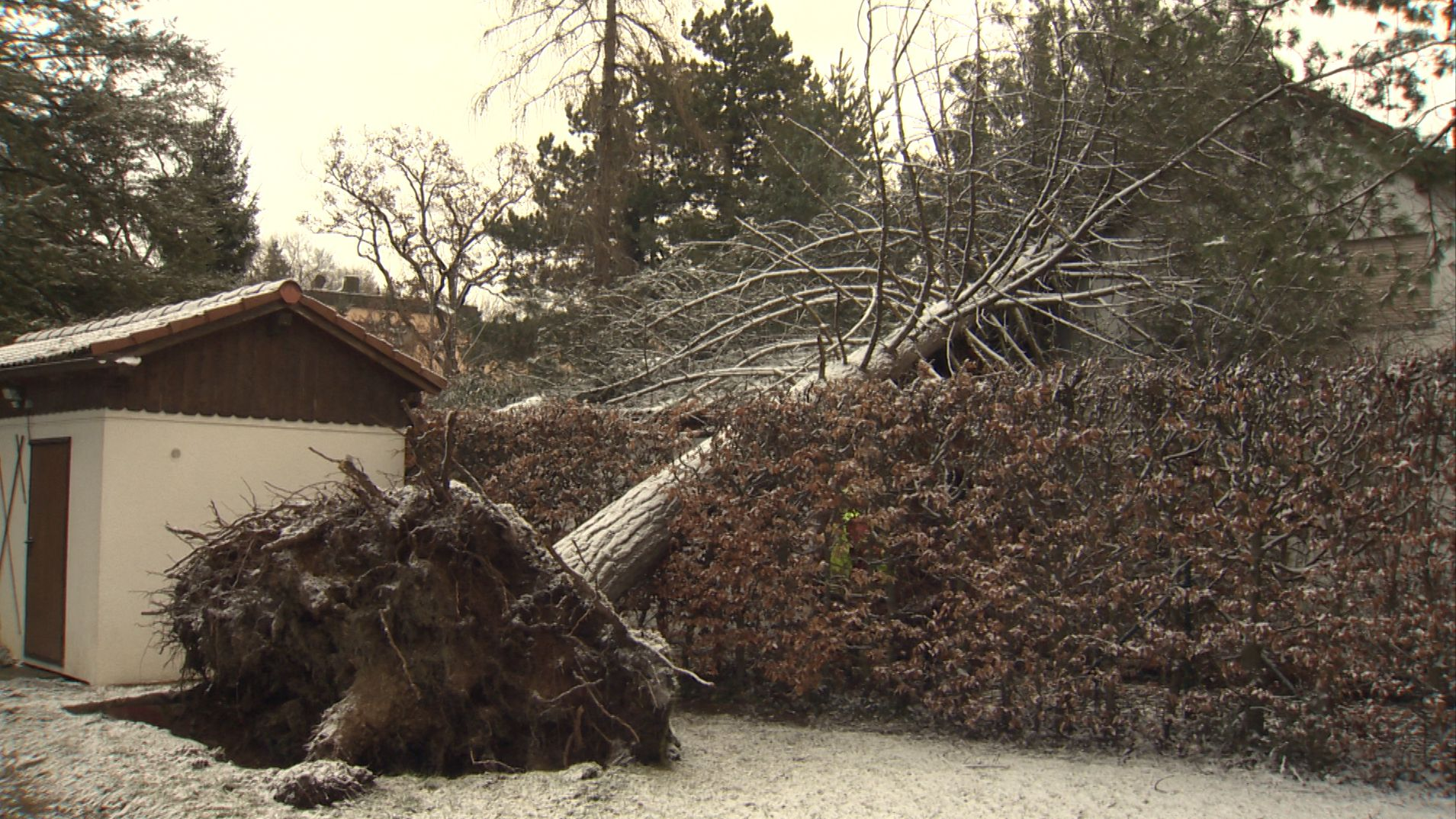 Sturmtief Bianca sorgt in Bayern für Unfälle und Stromausfälle