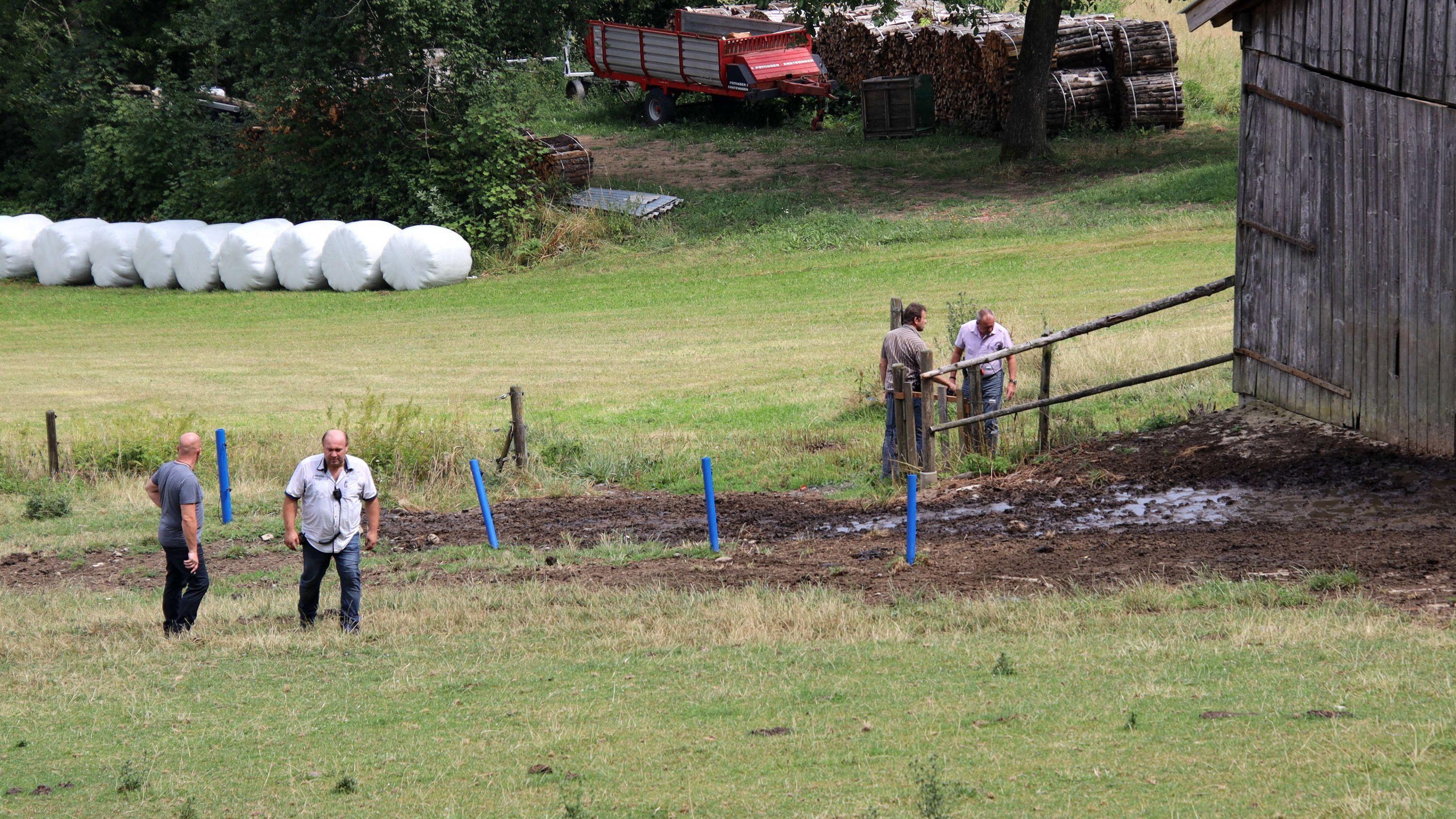 Polizisten in Zivil stehen auf einer Weide in Gleißenberg, auf der zuvor ein Stier zwei Menschen getötet hatte.