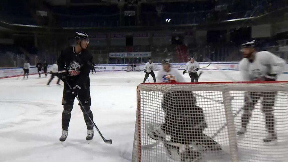Die Ice Tigers auf dem Spielfeld