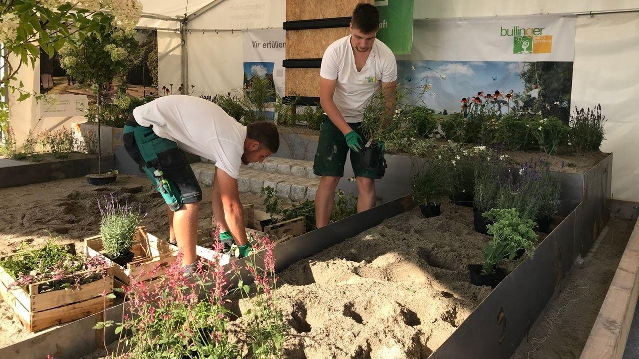 Landschaftsgärtner Julian Maier und Niklas Stadlmayer vor einem Beet mit Pflanzen in der Hand
