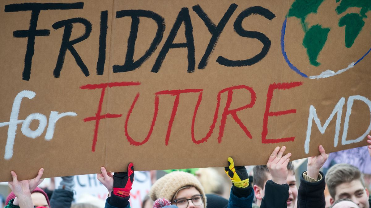 Protestschild on Friday for Future