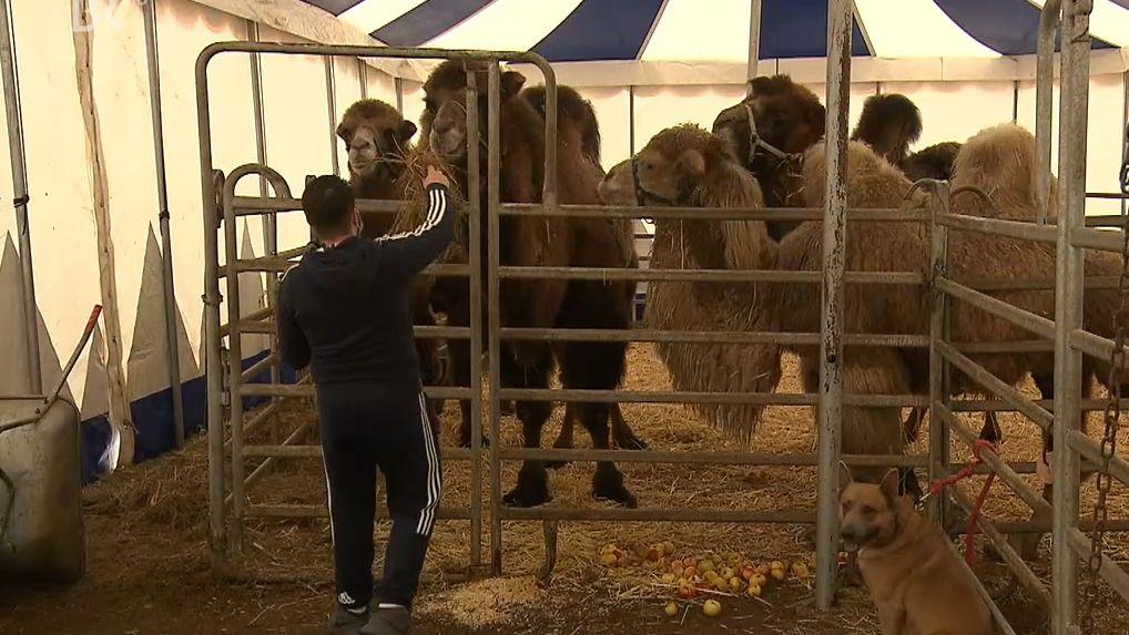 Futterspenden für die Tiere im Zirkus Renz