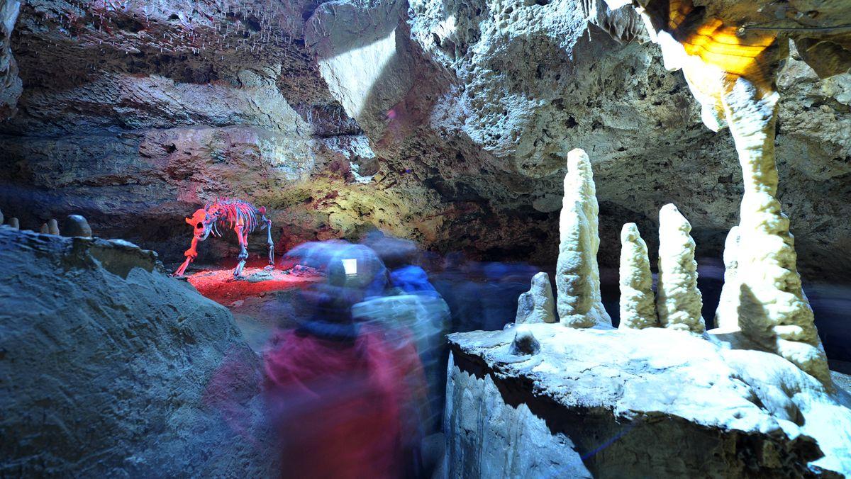 Besucher gehen am Skelett eines Höhlenbären in der Teufelshöhle in Pottenstein in der Fränkischen Schweiz vorbei.