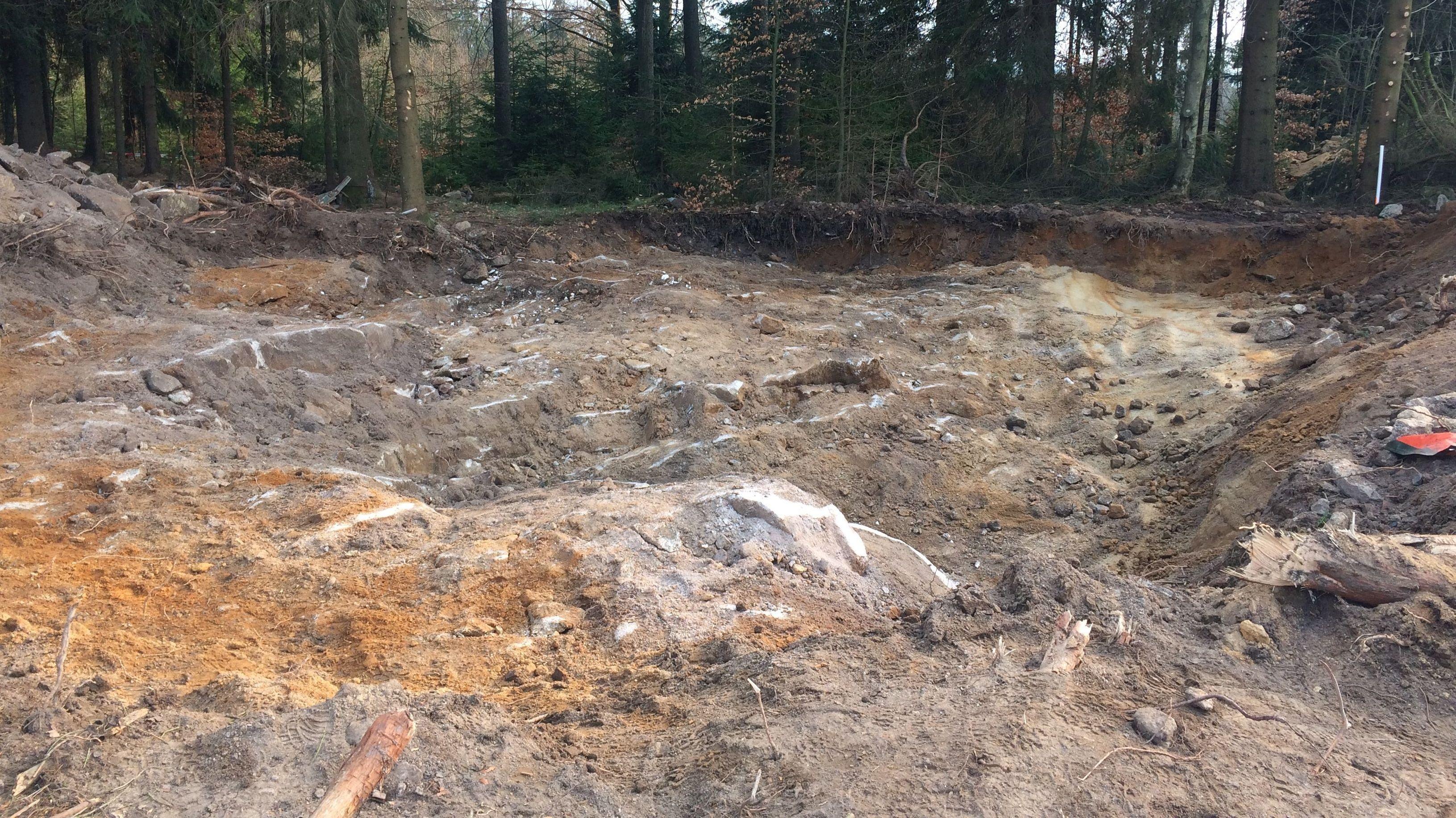 Das Grabungsareal im Wald bei Waldkirch nach dem Ende der Arbeiten