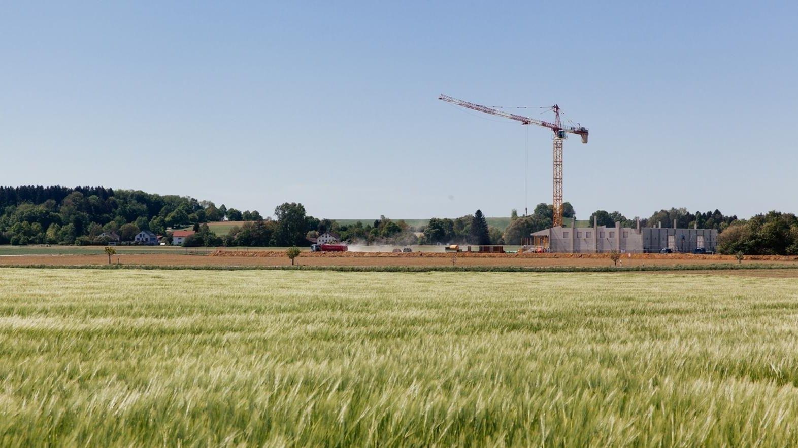 Bau am Rande eines Kornfelds