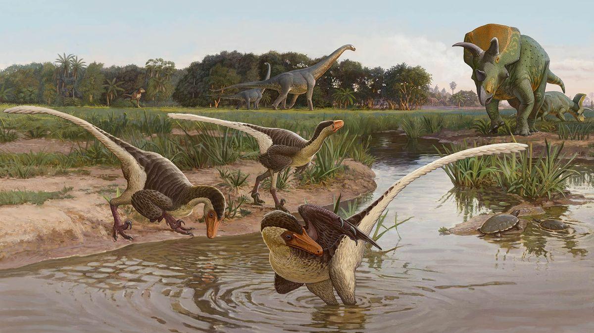 Illustration von drei gefiederten Dinobellatoren an einem Wasserloch, im Hintergrund ein Ojoceratops und ein Alamosaurus.