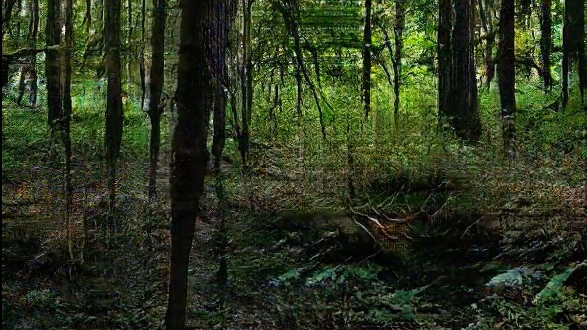 Lost in the Woods II, eine Arbeit von Andreas Greiner