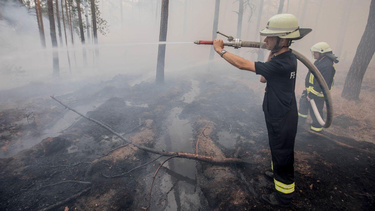 Ein Feuerwehrmann mit einem Wasserschlauch löscht einen Waldbrand