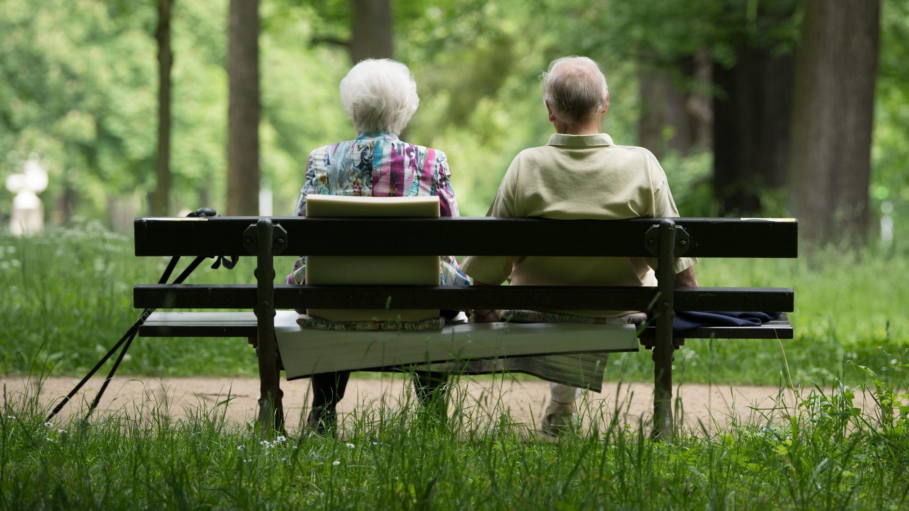 Zwei Spaziergänger sitzen in einem Dresdner Park auf einer Bank.