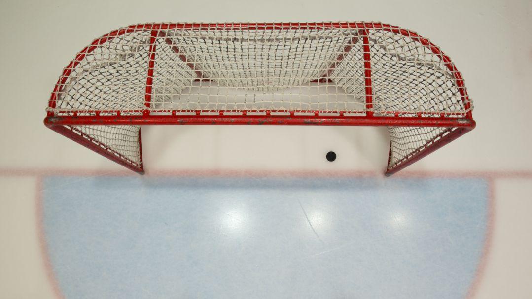 Puck in Eishockey-Tor (Symbolbild)