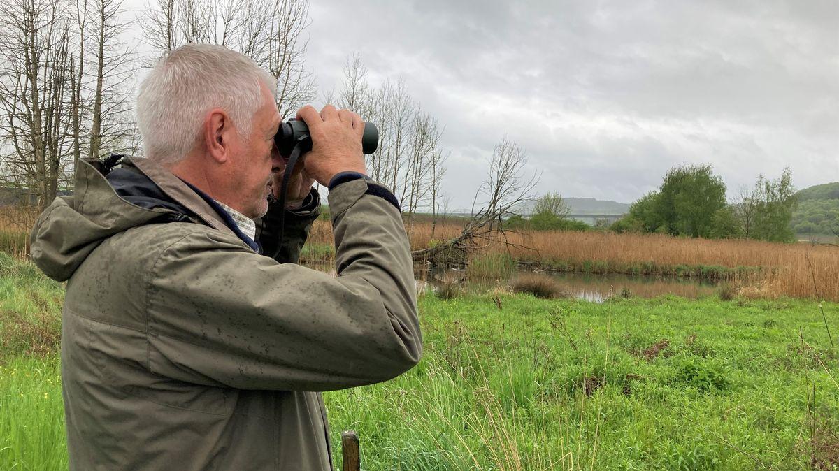 Hartwig Brönner vom Landesbund für Vogelschutz bei einer Vogelstimmenwanderung in Zellingen.