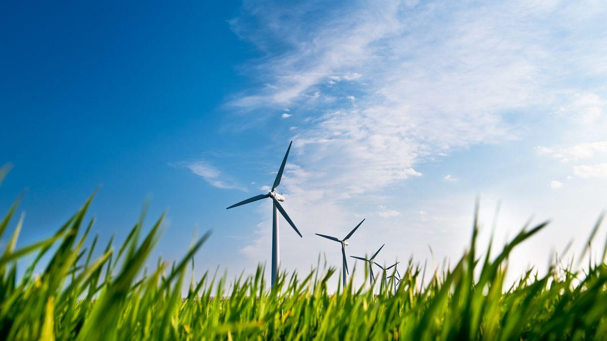 Eine Reihe von Windrädern, aus der Froschperspektive aufgenommen: Im Vordergrund ist grünes Gras, dahinter ein strahlend blauer Himmel mit weißen Wolken