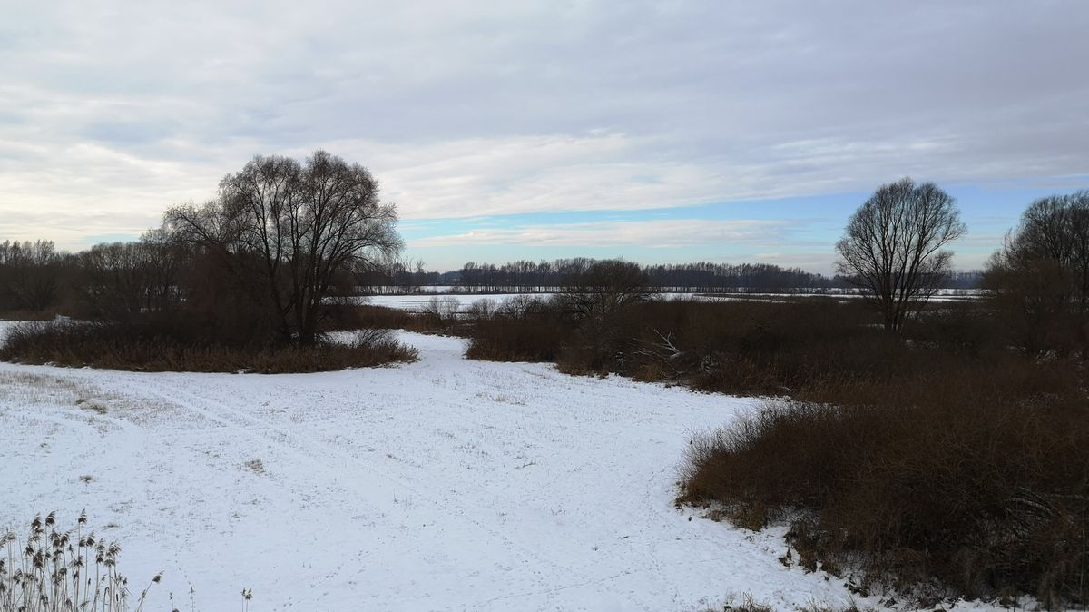 Naturschutzgebiet im Landkreis Straubing-Bogen.