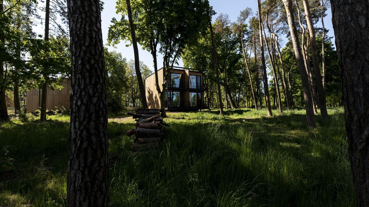 Wohnquartier zwischen Bäumen
