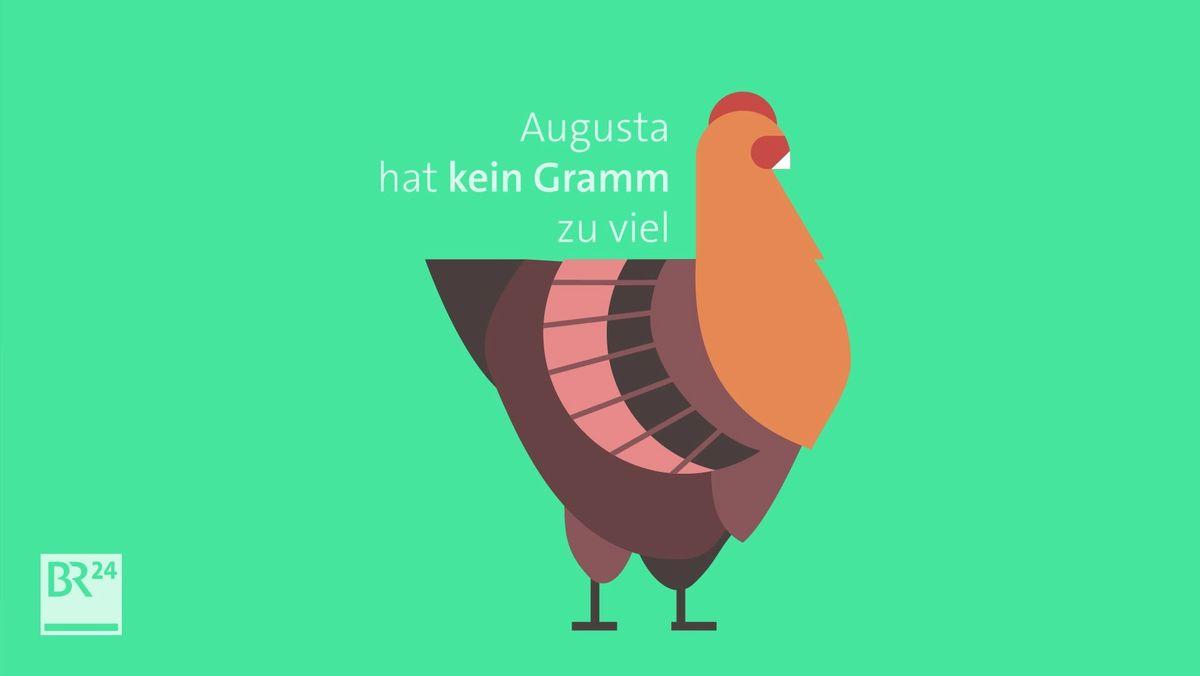 Nutztierhaltung: Huhn-Piktogramm