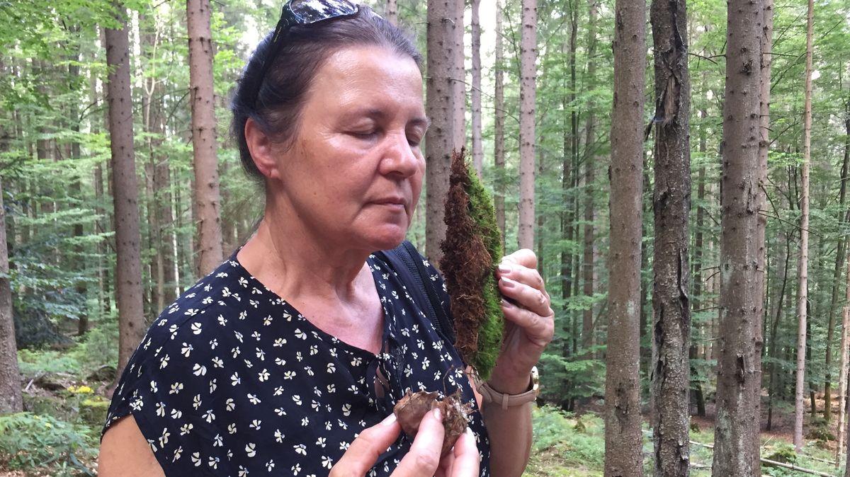 Eine Teilnehmerin des Waldbadens riecht an einem Stück Moos