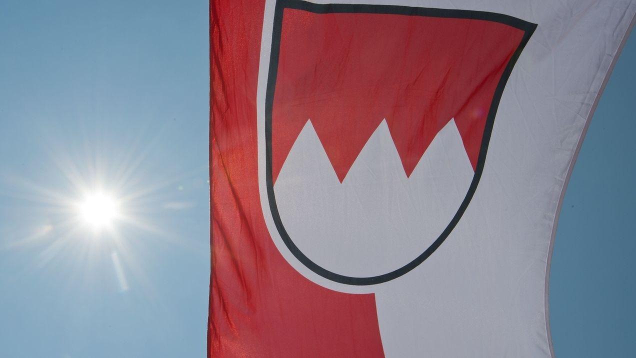 Fahne mit Frankenrechen