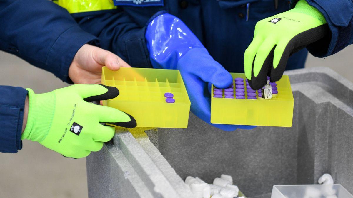 Impfstoff wird im Impfzentrum sortiert und verteilt