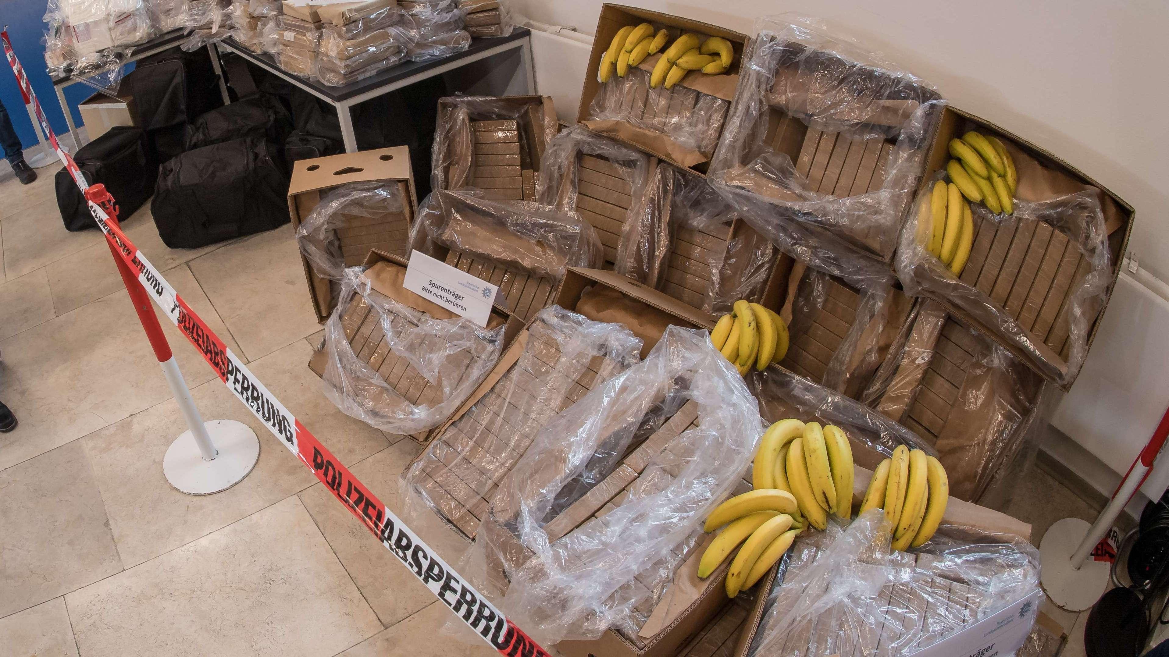 Kokain in Bananenkisten versteckt