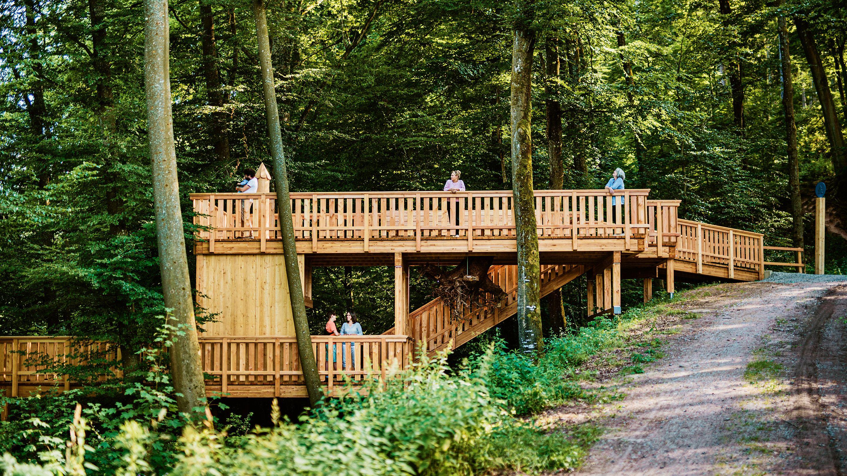 Waldkanzel auf dem Smart Pfad Odenwald