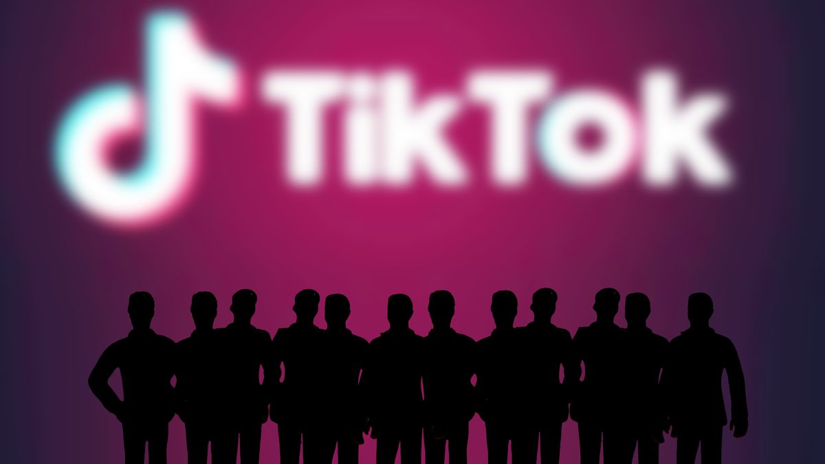 TikTok - wegen unklarer Datenlage in der Kritik