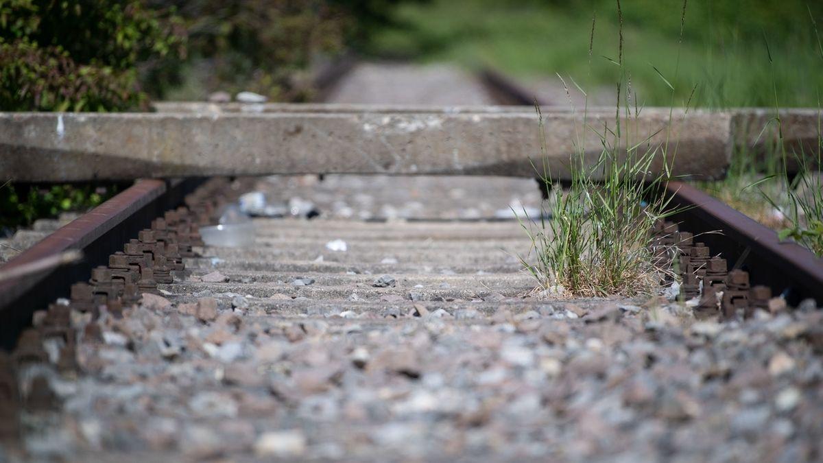 Gras wächst auf einer stillgelegten Bahnstrecke (Symbol)