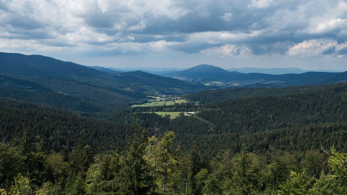 Blick in den Bayerischen Wald