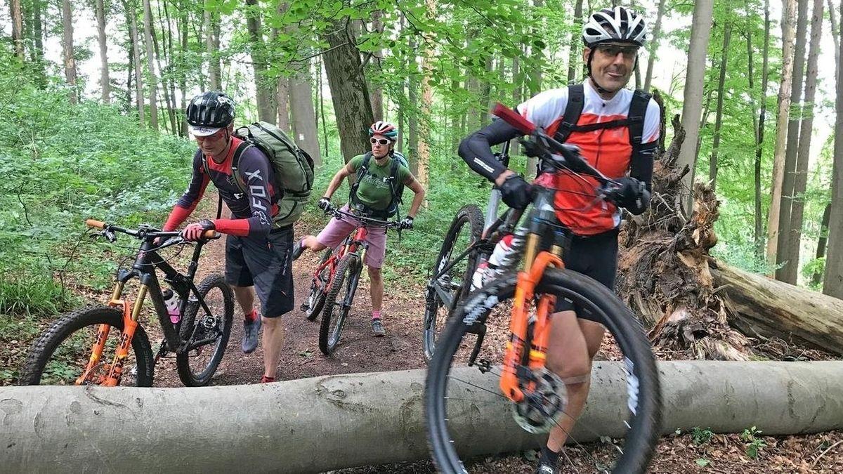 Drei Radfahrer stoppen im Wald vor einem querliegenden Baumstamm.