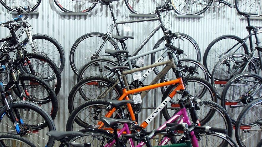 Mountainbikes und Rennräder in einem Fahrradladen