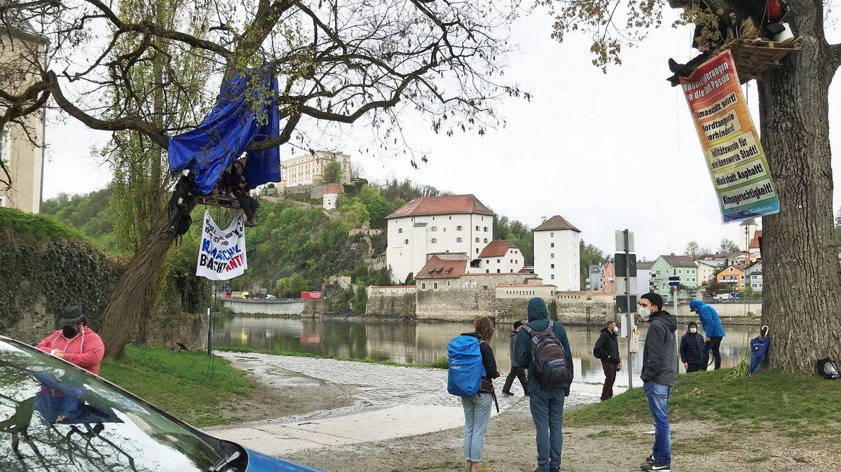 Am Mittwoch haben Klimaaktivisten zwei Bäume an der Passauer Ortsspitze besetzt.