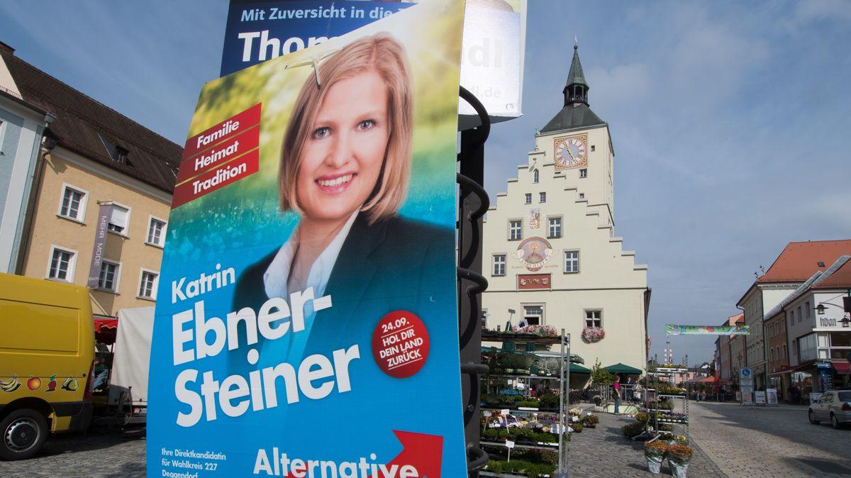 Wahlplakat von 2017 der AfD Landtagsabgeordneten und Stadträtin Kathrin Ebner-Steiner in Deggendorf
