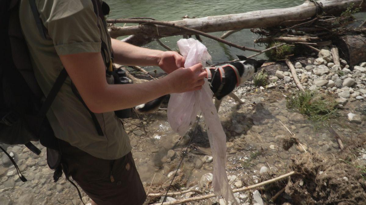 Plastikfolie in der Natur