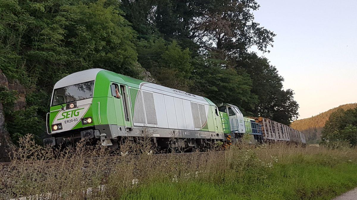 Beinahe ungebremst rast ein mit Holz beladener Güterzug durch die Oberpfalz