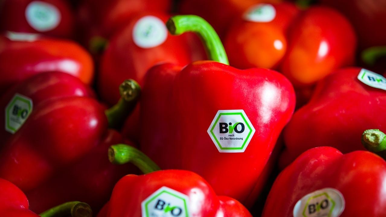 Rote Bio-Paprika