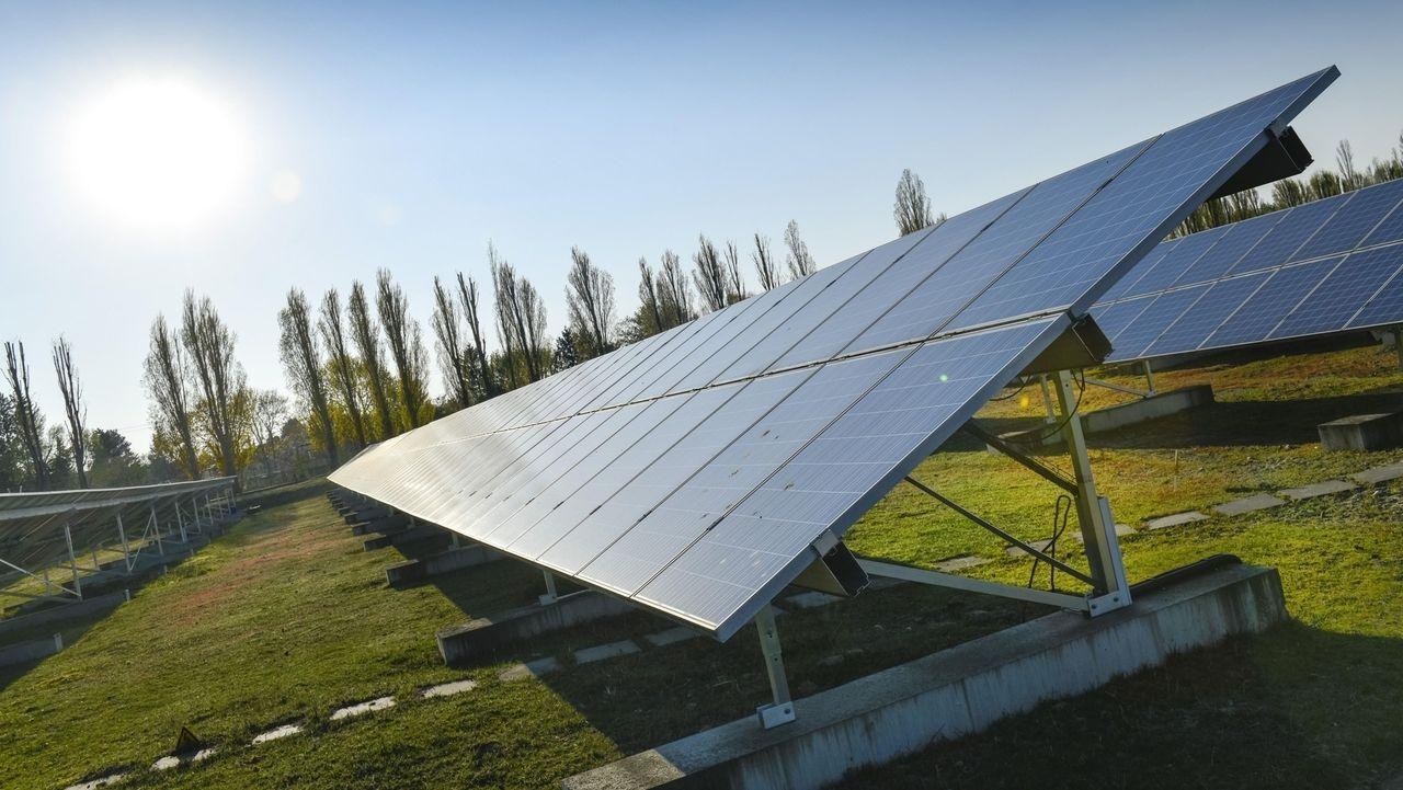 Solarmodule stehen auf einer Wiese.
